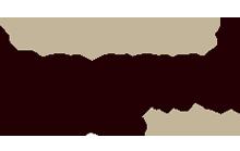 vazard logo