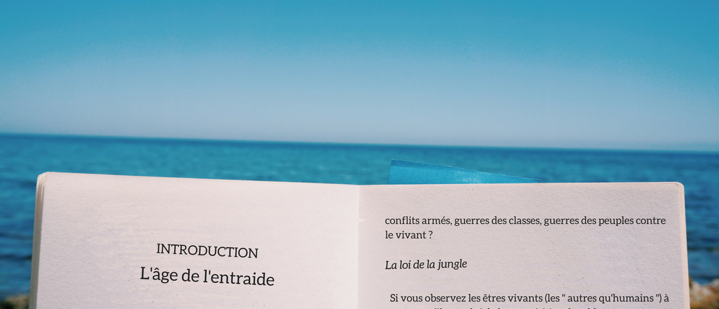 Sélection de livres éco-responsables pour l'été 2018- Label LUCIE